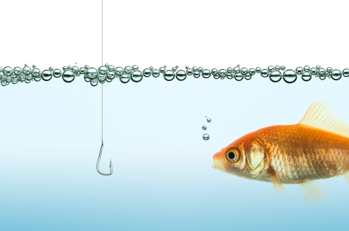 the goldfish and the hook